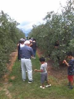 りんごの木オーナー様開園